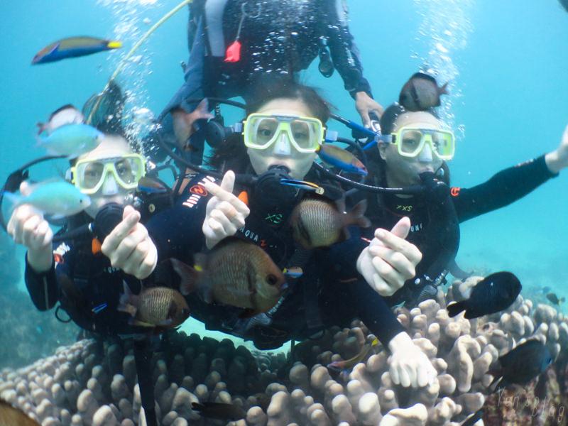 【長灘島旅遊】菲律賓長灘島潛水體驗(馬力歐潛水中心)|六天五夜自助海島旅行